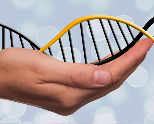 Cientistas anunciam avanço contra o envelhecimento Viver Agora