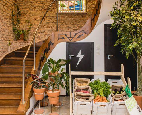Casa do bem inaugura casa com atividades gratuitas em Ipanema
